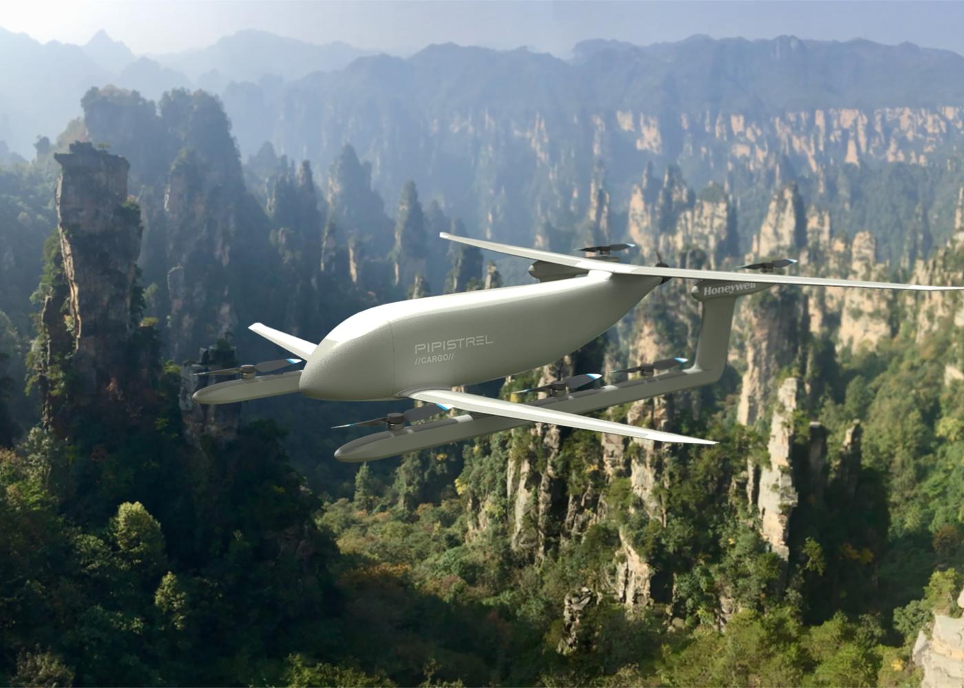 Pipistrel Nuuva V300 Honeywell